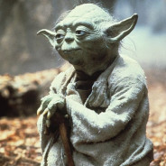 Yoda – 'lucky you are'